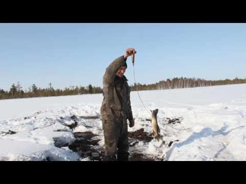 юрков охота и рыбалка