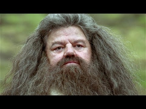 Why Hollywood Stopped Casting The Actor Who Played Hagrid