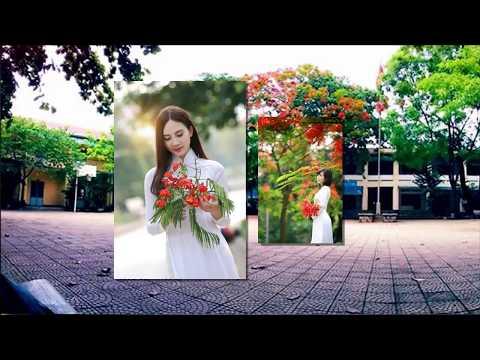Hoa Vang 20 nam 07072018 trinh dien