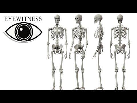 EYEWITNESS | Skeleton | US Version feat. Martin Sheen | S1E13
