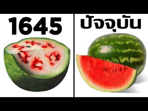 10 อันดับ ผักผลไม้ที่แตกต่างอย่างสิ้นเชิงในปัจจุบัน