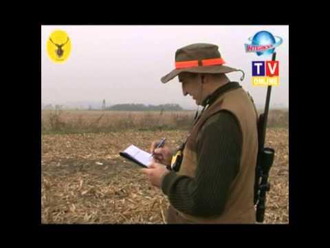 Koło Ostoja polowanie jesień 2009 Naroczyce - Hubertus