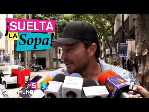 Notícias dos famosos - Marjorie De Sousa habla de los mensajes a Julián Gil  Suelta La Sopa  Entretenimiento