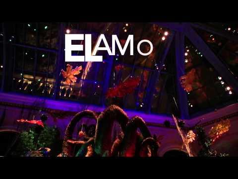 Me Caso Contigo - Letra - Felipe Pelaez (Video)
