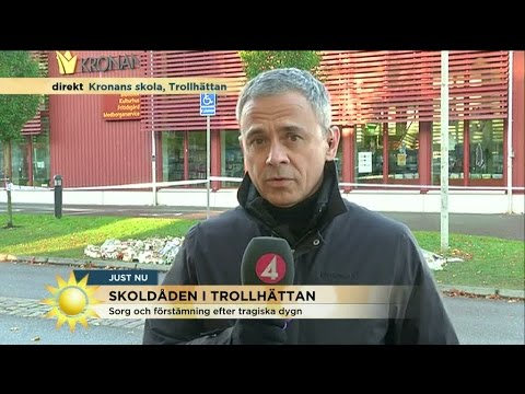 peter lindgren tv4