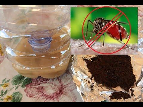 lotta alla  zanzare: ecco dei repellenti naturali