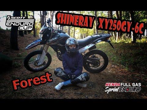 Shineray XY 250GY-6C немножко леса