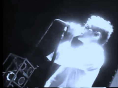 Tekst piosenki R.E.M. - Hyena po polsku