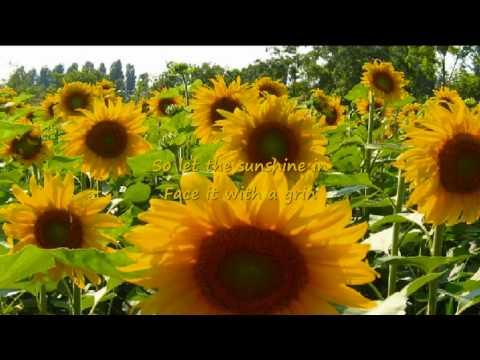 Tekst piosenki Anne Murray - You Are My Sunshine po polsku