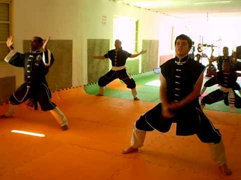 Alunos de Kung Fu de Sacramento em Forma do Leopardo