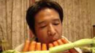 Carrot pan-flute