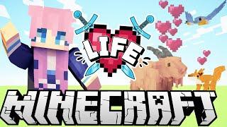 LDShadowLady, Pet Detective | Ep. 9 | Minecraft X Life SMP