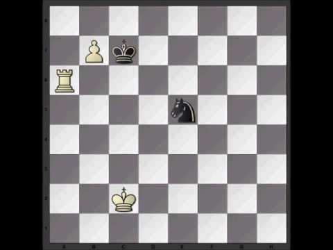 Chess Video: Endgame Study