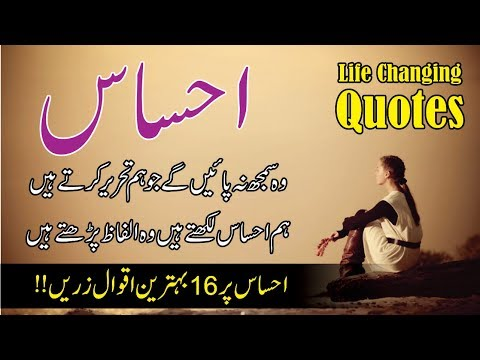 Ehsas 16 behtreen quotes in hindi urdu with voice    best quotes about ehsas