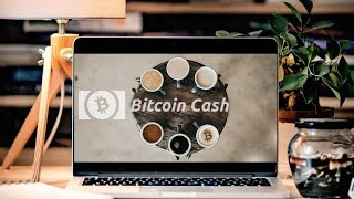 Bitcoin Cash in Business   Core Loosing Market Dominance