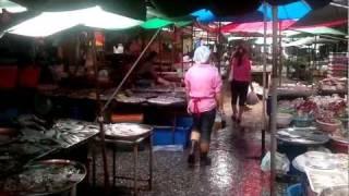 Bangkok Living&Travel - Wet Market At Soi 71&Sukhumvit Part 1