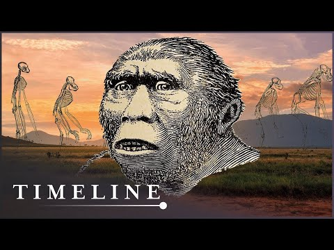 The Remains Of The Oldest Human Ancestor Ever Found | First Human | Timeline