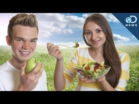 Are Vegetarians Better for the Environment?