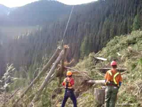 Skyline logging in Blue River B.C. 2