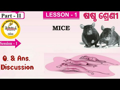 'MICE' Class 6 English lesson - 1, PART-II with full questions answer discussion