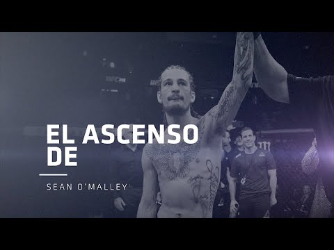 El Ascenso De Sean O'Malley