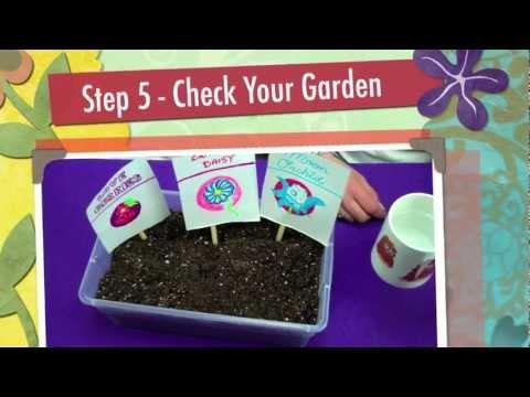 Virtual Adoption Baby Games Kitchen Garden Design