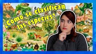 Cómo se clasifican las especies