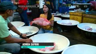 Download Video Wisata ke Pasar Ikan Muara Angke -IMS MP3 3GP MP4