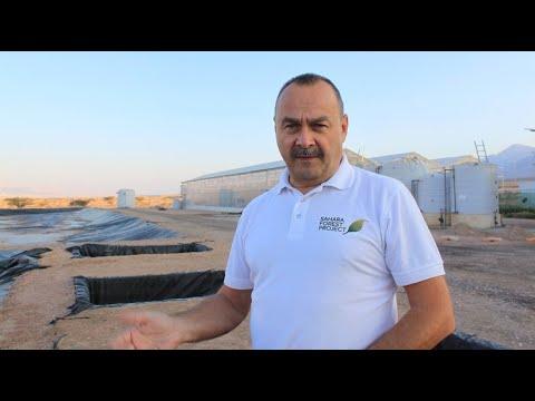 Jordanien: Gurken aus Solarstrom und Salzwasser