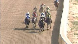 Mister Nofty Easily Wins 1st Level Allowance Parx 8 June 26 2016
