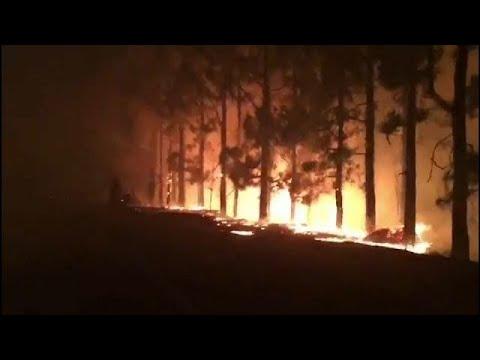 العرب اليوم - شاهد: حريق هائل داخل جزيرة