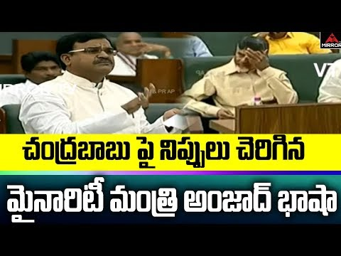 Kadapa YCP MLA Amjad Basha Serious Warning to AP EX CM Chandrababu Naidu | AP Assembly | Mirror TV