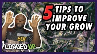 5 Simple Tips To Improve Your Weed Grow by Loaded Up
