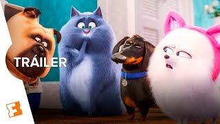 La Vida Secreta de tus Mascotas 2 – Tráiler Final (Español Latino)