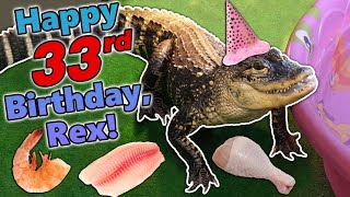 Giving our Alligator a Birthday Feast! by Snake Discovery