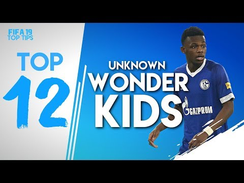 12 FIFA 19 CAREER MODE WONDERKIDS YOU'VE NEVER HEARD OF!