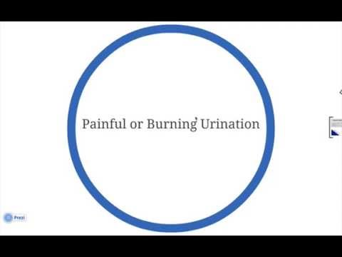 Burning Sensation When Urinating