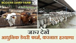 Karnal India  City pictures : Modern dairy Farm in India - NDRI Karnal, Haryana - (Must Watch) | India Dairy Farming