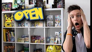 Opening a Pokemon Store in my House by Unlisted Leaf
