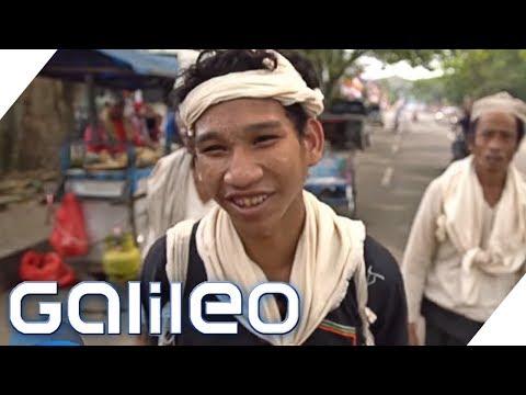 Erwachsen werden in Indonesien: Zwischen Dschungel und Großstadt | Galileo | ProSieben