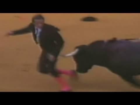 Bull In Your Anus ! 😮Commentary & Vid😮( David Spates )