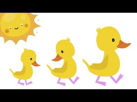 ПЯТЬ МАЛЕНЬКИХ УТЯТ - Считалочка - Развивающие детские песни мультики про счет (видео)