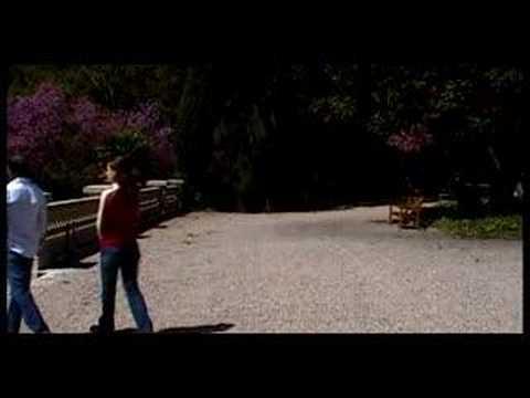 Tekst piosenki El Sueño de Morfeo - Somos Aire po polsku