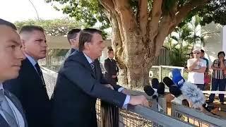 Bolsonaro acusa ONGs