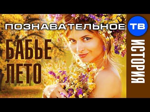 Почему называется БАБЬЕ ЛЕТО (Познавательное ТВ Артём Войтенков) - DomaVideo.Ru