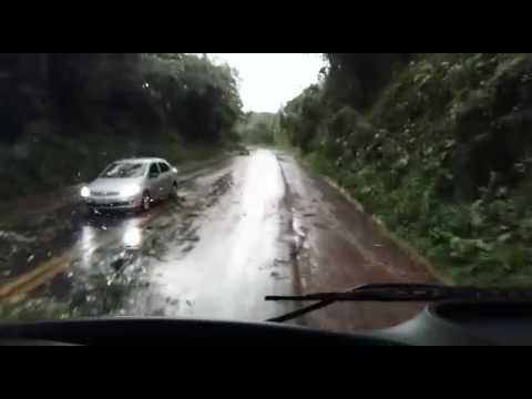 Árvores arrancadas por temporal interditam trânsito na BR 282, em Iraceminha (SC) (2)