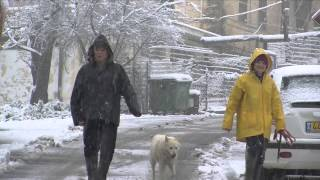 Rosh Pina Israel  City pictures : Snow in rosh pina - Israel - 2015
