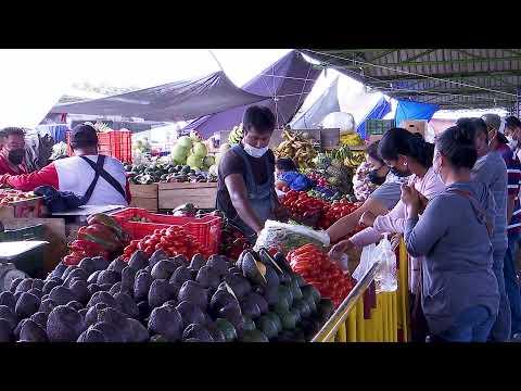 Mercados municipales mantienen abastecimiento en la ciudad