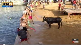 يصارعون الثور حتى سقط في الماء