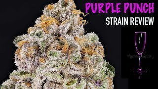PURPLE PUNCH STRAIN REVIEW by The Cannabis Connoisseur Connection 420
